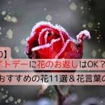 【2020】ホワイトデーに花のお返しはOK?おすすめの花11選&花言葉の意味